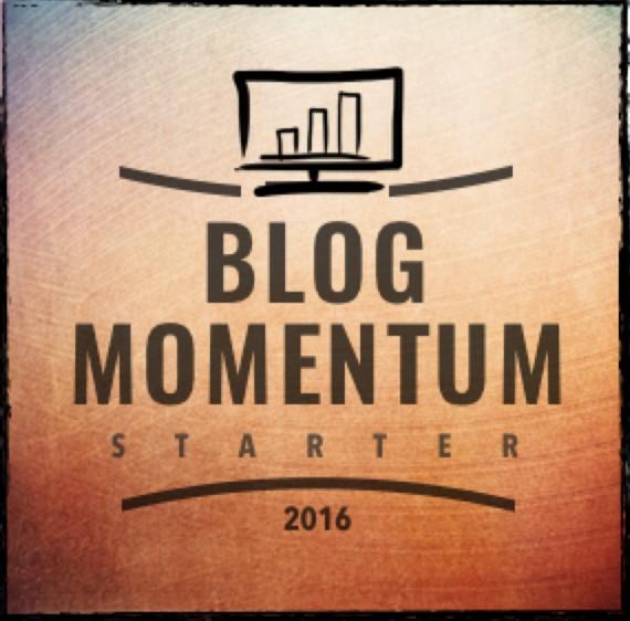 9. Schritt BlogMomentum Starter 2016